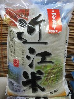 令和元年産  滋賀県産こしひかり 白米10�s