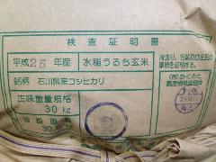 28年産  石川県産こしひかり 玄米5�s