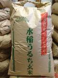 【送料無料】29年産(新米) 三重県産コシヒカリ 玄米30kg