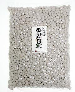 白いんげん豆(大手亡) 1kg