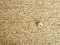 ジャガード天竺 M6027