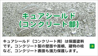 キュアシールド(コンクリート部)