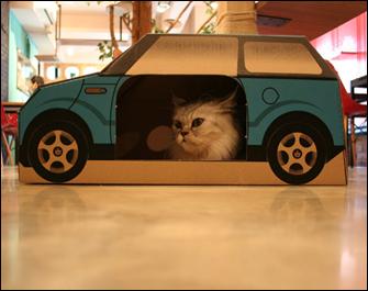 プレイハウス CAR - BLUE