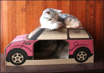 プレイハウス CAR - PINK