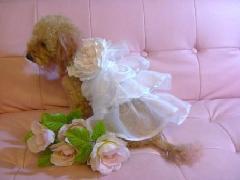 コサージュ付きフリフリオーガンジードレス