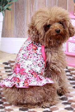 フラワーとリボンのスリングドレス (ローズピンク)