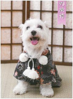 【ワンちゃん用ウェア】 羽織袴 桜龍♪