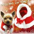 犬用サンタクロースマント