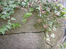 御影サビ石