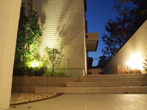 光りと風が煌めく庭