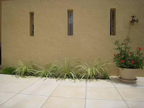 スリット入りの壁面前に植えた斑入りヤブラン