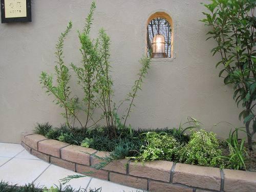 そんなベージュ色の壁に緑の植物がとても良く似合っています
