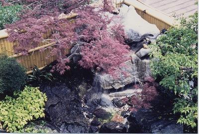 Japanese garden01