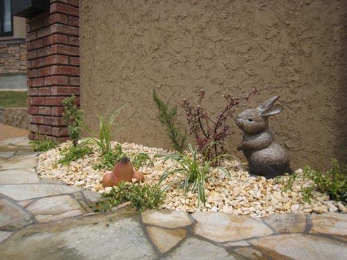 モグラとウサギの新居