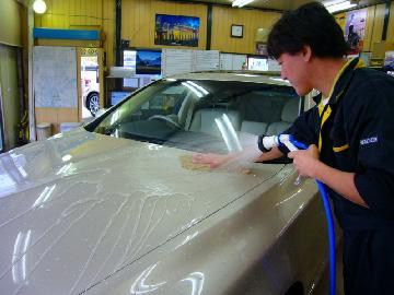 (6)洗車