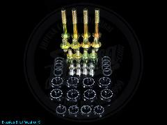 SKUNK2 ヘッドカバーワッシャー Bシリーズ ブラック