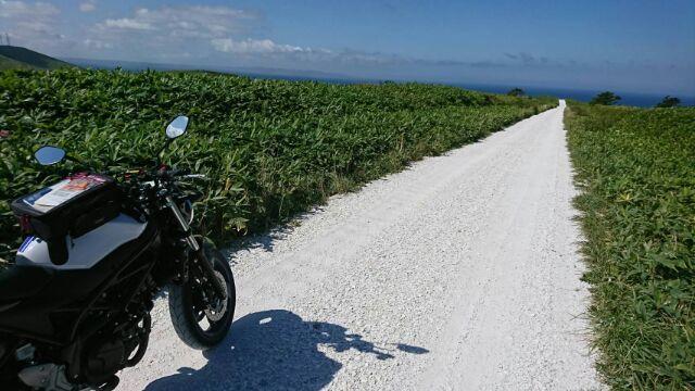 貝殻で出来た白い道☆