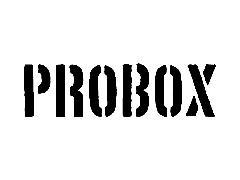 PROBOX ステッカー カラー 黒・白