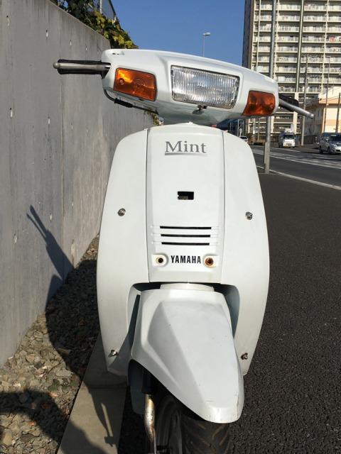 ヤマハミント 【38,000円】