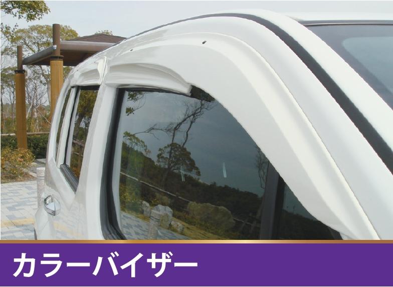 カラードアバイザー 【税抜29800円】