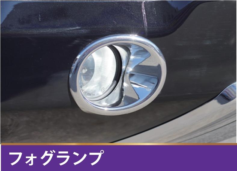 メッキフォグキット 【税抜49800円】