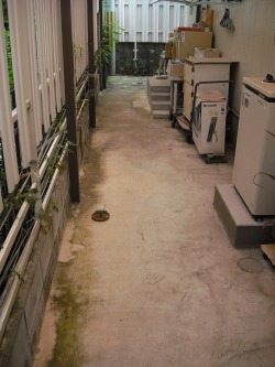施工前 足もとに水たまりができていた。
