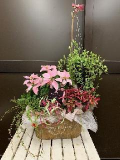 ハンギンググリーン入りの寄せ鉢