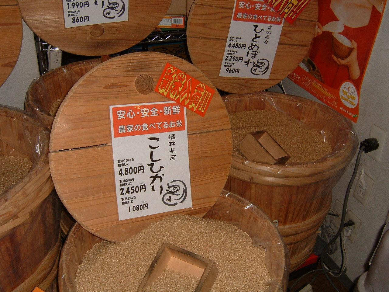 福井県産こしひかり玄米10kg
