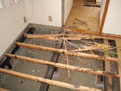 居間の床下の被害です。