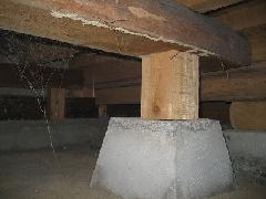 床下の蟻道