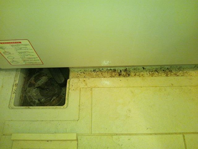浴室排水口清掃前