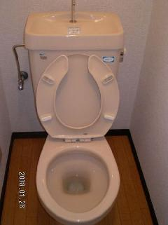 トイレ便器のとれない汚れ