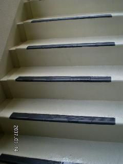 階段のコケ・黒ずみ・白華汚れ