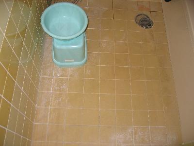 トイレの床タイル こびり付いたアカやカビで汚れがとれない。