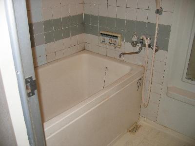 こんなお風呂には入りたいと思いますか?