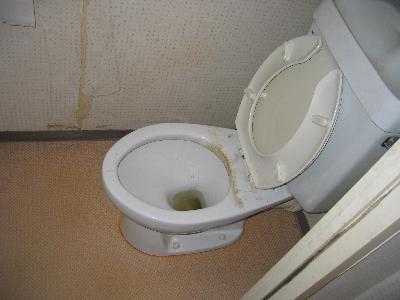 最近の一般家庭も公衆トイレ並みに??
