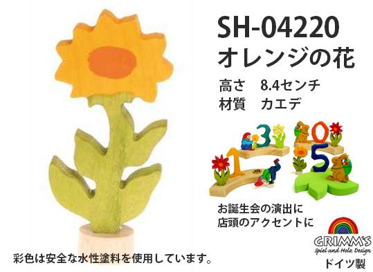 SH04220 オレンジの花