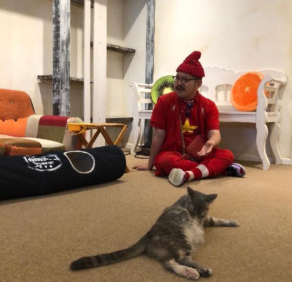 猫カフェオープン!