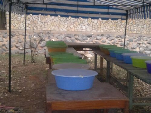 ガーナ野口英世研究室によるZERO-MOZをテスト風景