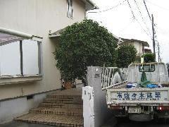 植木工事 現場:四街道市さちが丘