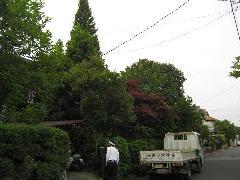 H23年6月植木工事みそら