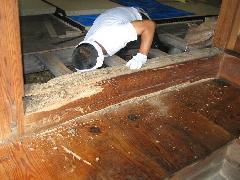 シロアリ被害修理工事