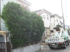 植木工事 千城台