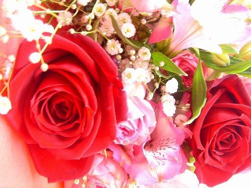 バラ「サムライ」花束