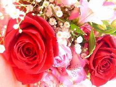 バラ「サムライ」を使った花束