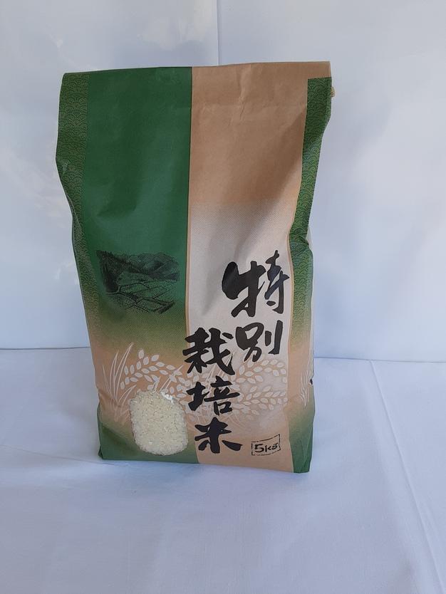 特別栽培米こしひかり 5kg