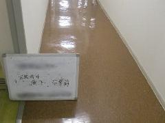 鴻巣市 ビル定期清掃 共用廊下