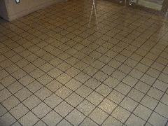 大田区 マンション 共用廊下掃除