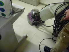 ビル 文京区 床掃除