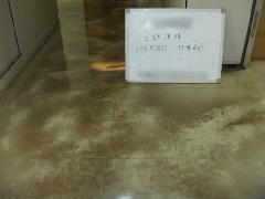 ビル 市川市 共用廊下清掃